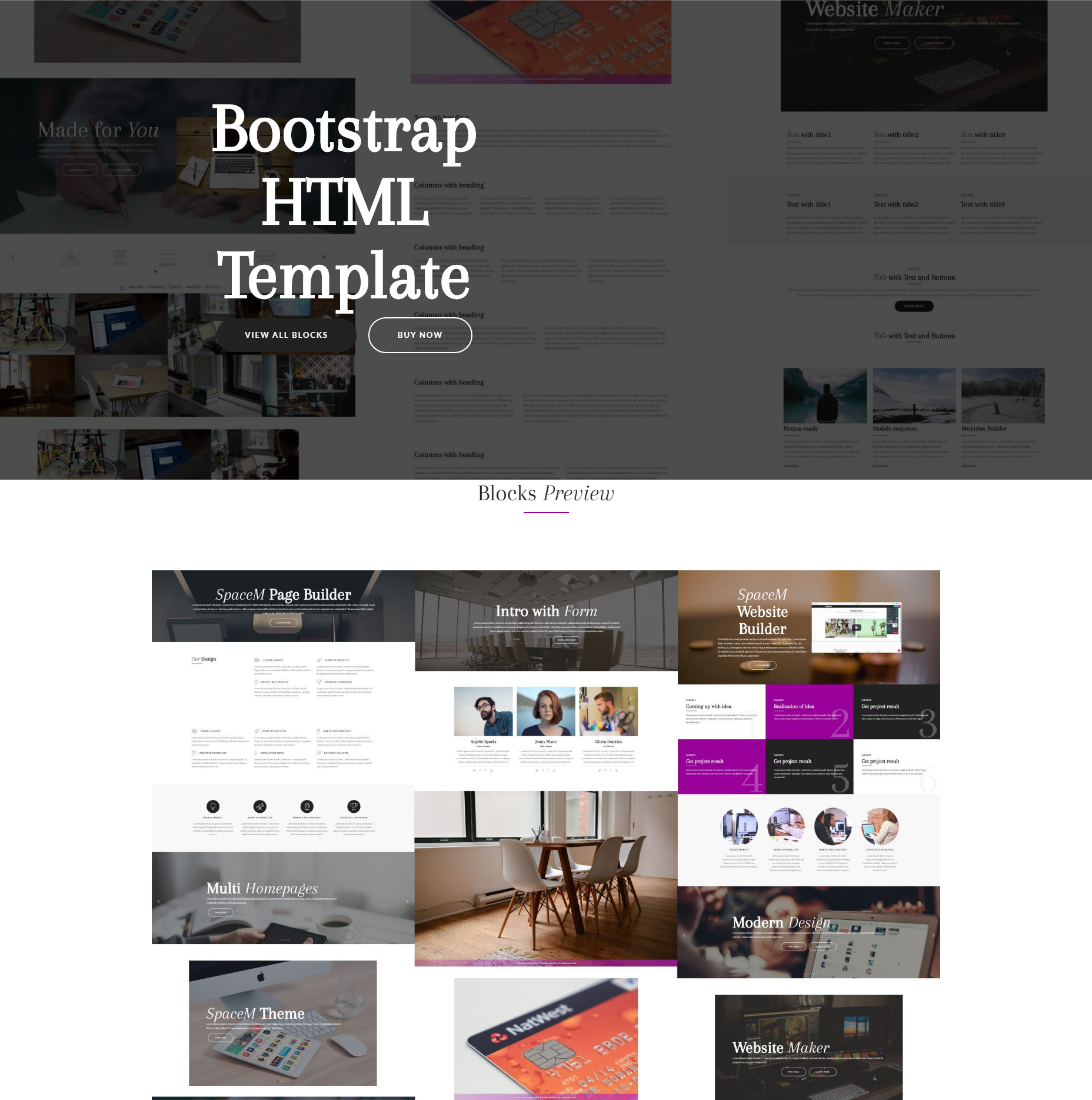 HTML Bootstrap SpaceM Themes