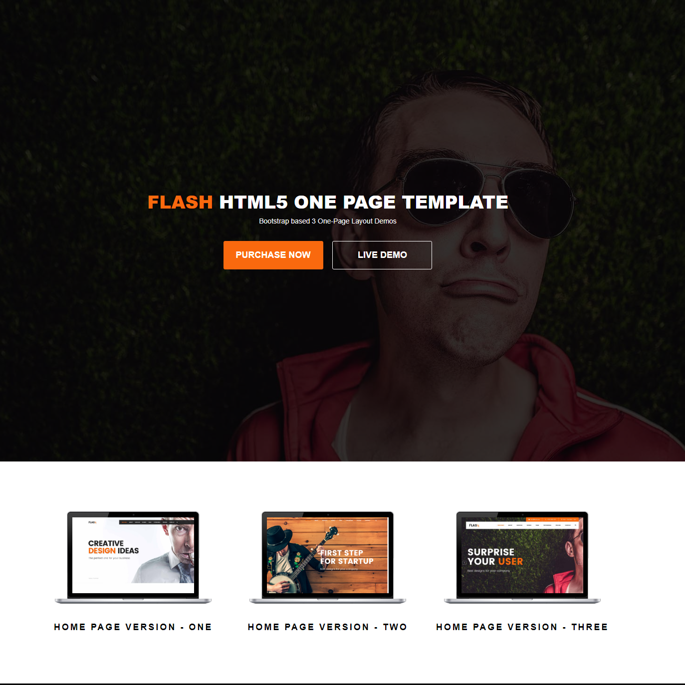 HTML Bootstrap Flash Templates