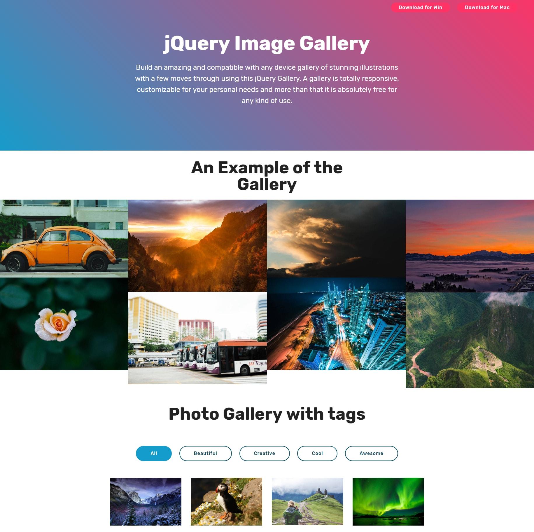 JavaScript Bootstrap Illustration Gallery